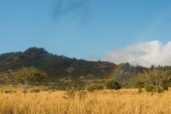 Niet elke regenboog fotografeert even makkelijk
