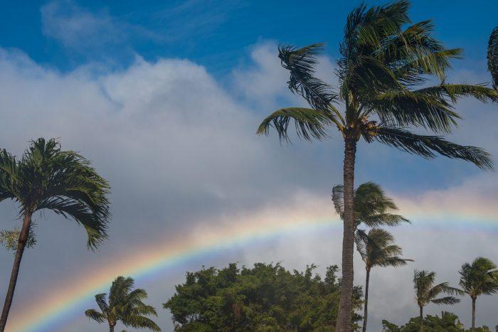 Polarisatiefilter bij een regenboog
