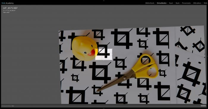 In Lightroom maak ik een uitsnede welke 700px breed is. Vervolgens exporteer ik deze foto in het nieuwe formaat.