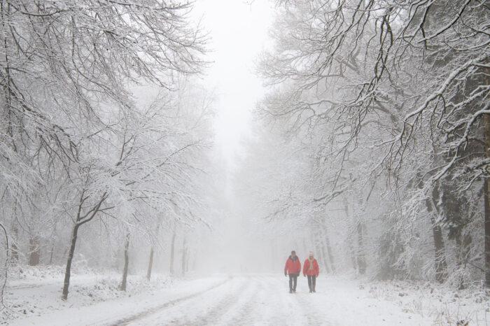 Man en vrouw in rode jassen loopt door besneeuwd landschap