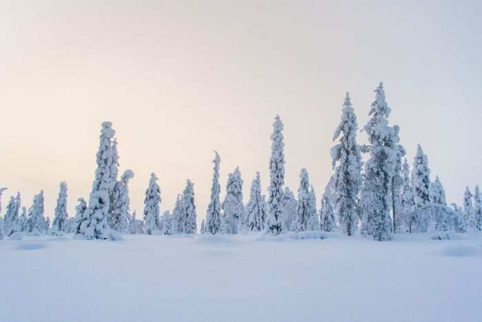 Een blauwe lucht is niet de enige kleur die contrast biedt in de foto. Deze gekleurde lucht bij zonsopkomst geeft ook voldoende contrast en voorkomt dat de foto te plat wordt.