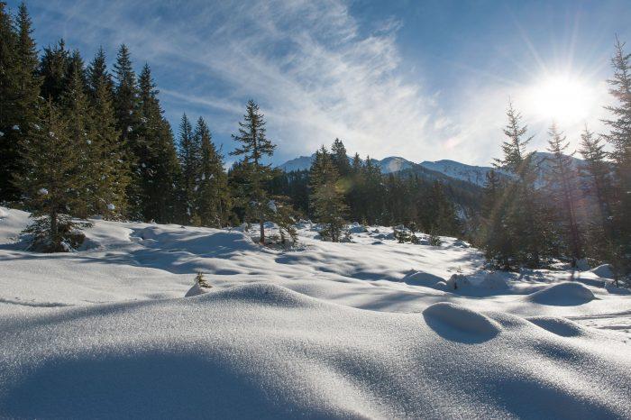 Als het bovenste laagje sneeuw begint te smelten en het zonnetje schijnt, dan glinstert de sneeuw extra!