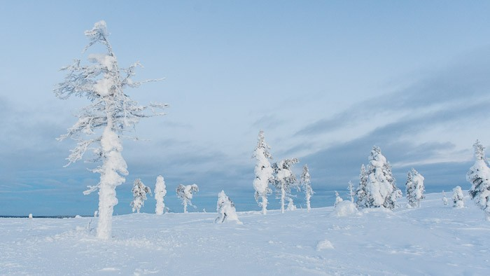 Foto's maken in koude omstandigheden