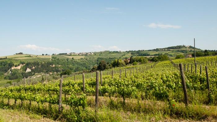 Toscane: landschapsfotografie in de ochtend. Zelfs in de zomer is om half 11 het licht al vrij hoog