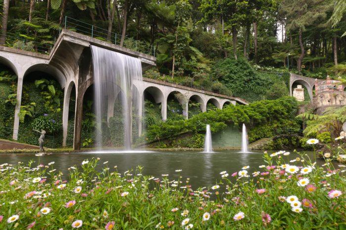 Een kunstmatige waterval bij de botanische tuinen in Funchal, Madeira. De bloemen op de voorgrond geven de foto diepte.