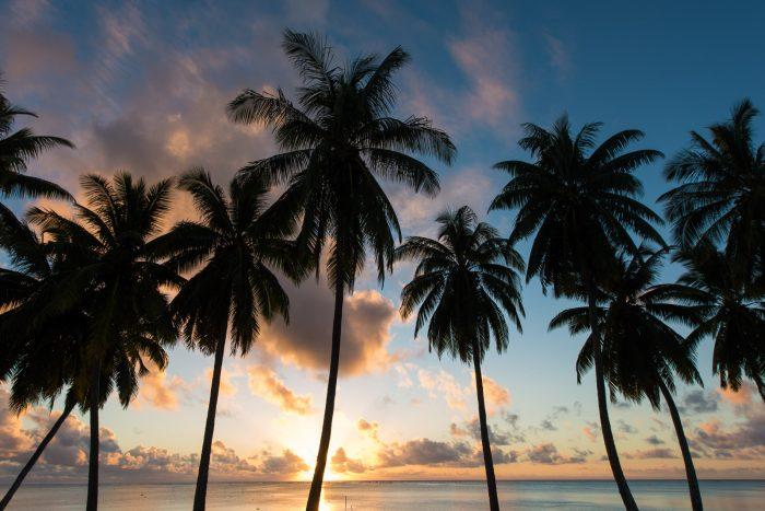Kies een duidelijke vorm qua silhouet bij het fotografen van een zonsondergang