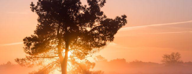 Mijn ochtendritueel voor het fotograferen van een zonsopkomst