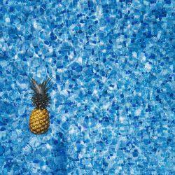 zwembad-pineapple-supply-56454